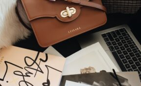 Pranda handbag with cards and an Apple Laptop